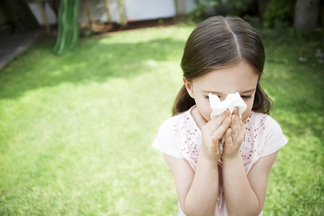 High pollen levels affect performance in work and school